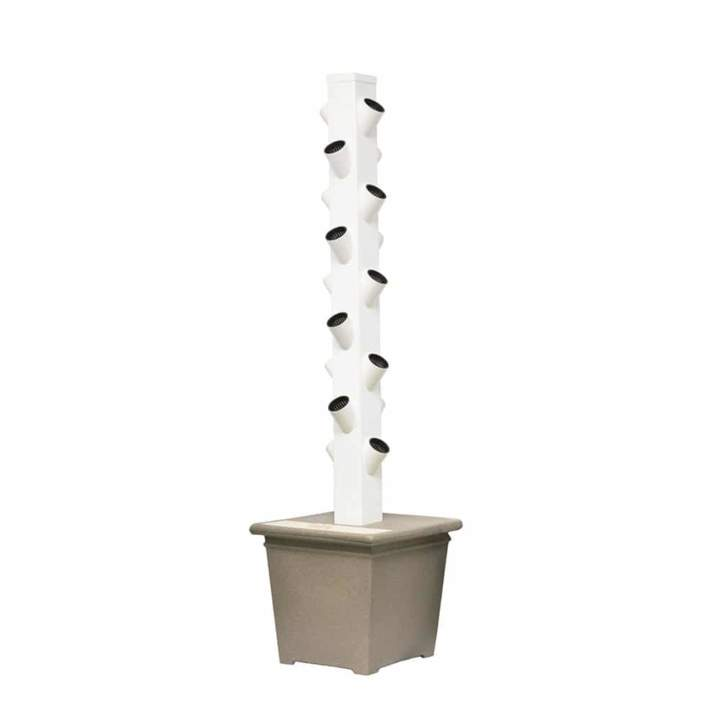 Aeroponic & hydroponics technology grows fruits, vegetables and herbs